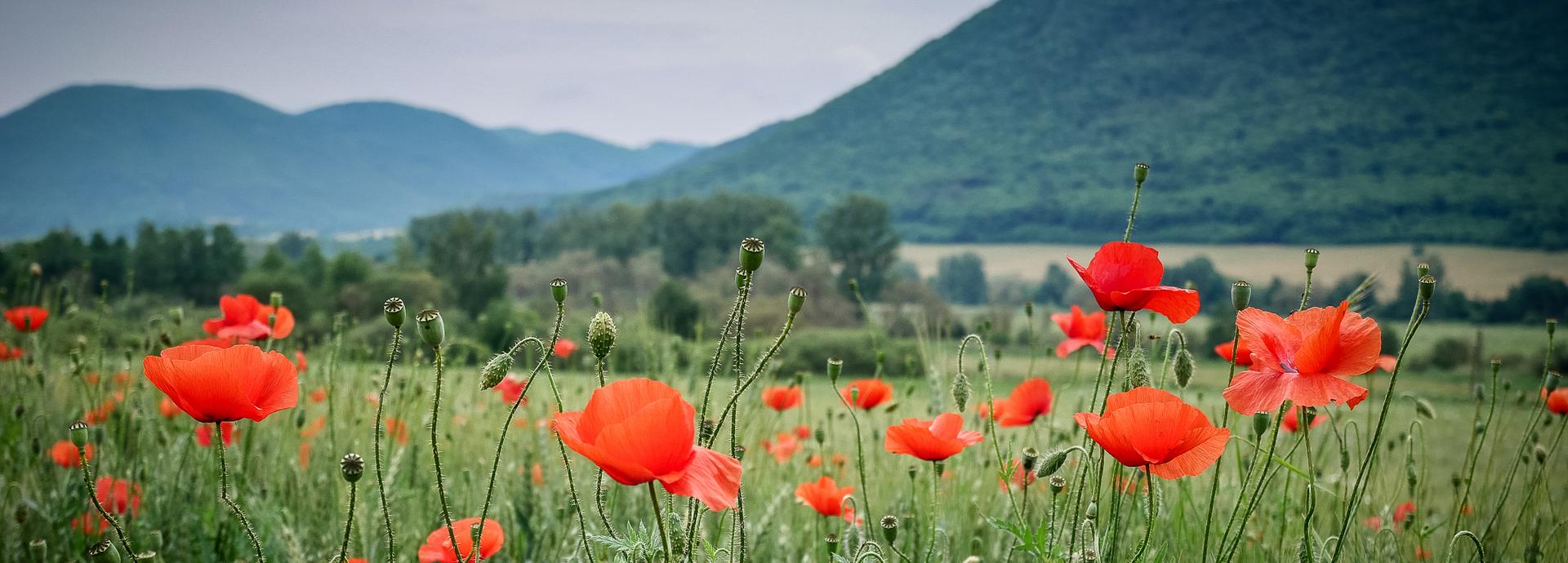 Három nap tekerés szlovákia-karszt vidékén